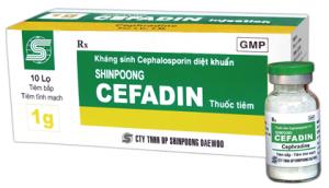 CEFRADIN Kháng sinh cephalosporin thếhệ1 (1)
