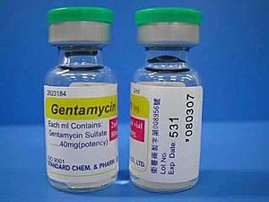 GENTAMICIN Kháng sinh nhóm aminoglycosid