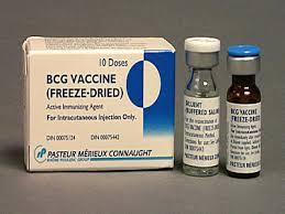 VACCIN LAO Vaccinum tuberculosis (BCG) cryodesiccatum (1)
