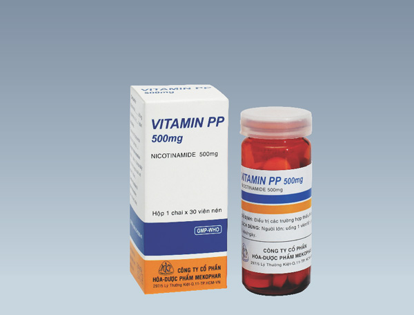 NICOTINAMID (Vitamin PP) Thuốc dinh dưỡng, vitamin nhóm B (2)
