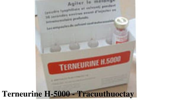 Terneurine H-5000 - Tracuuthuoctay