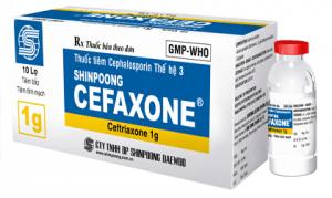 CEFAZOLIN Kháng sinh cephalosporin thếhệ1