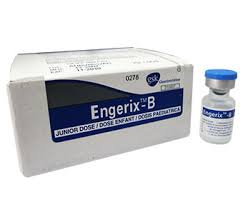 ENGERIX-B thuốc gì Công dụng và giá thuốc ENGERIX-B (2)