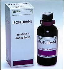 ISOFLURAN -Thuốc gây mê (dễ bay hơi) (1)