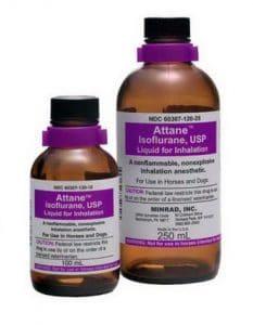 ISOFLURAN -Thuốc gây mê (dễ bay hơi) (2)