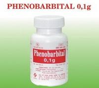PHENOBARBITAL thuốc Chống co giật và an thần, gây ngủ (1)
